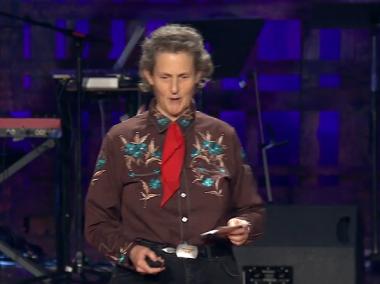 Temple Grandin snakker på TED. Ill.: TED.com