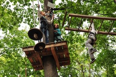 Barn som klatrer i tre